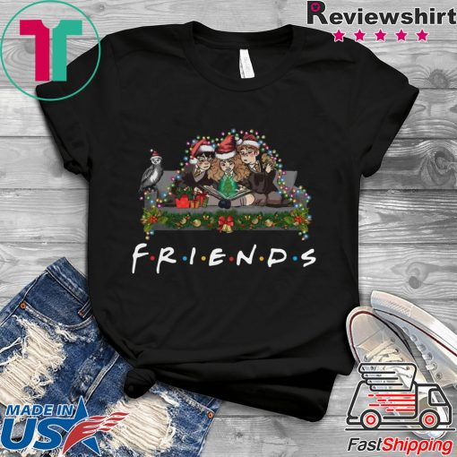 Harry Potter Hermione And Ron Weasley Christmas Friends Shirt
